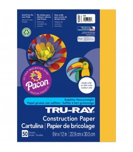 "TRU-RAY® CONSTRUCTION PAPER 9"" X 12"" GOLD COLOR, 50 SHEETS"