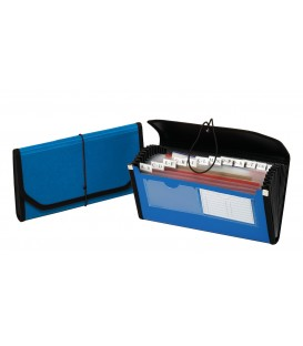 PENDAFLEX 13 POCKET FILE, PROFESSIONAL ORGANIZING, POLY EXPANDING