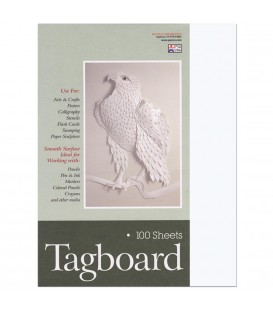 "PACON® HEAVYWEIGHT TAGBORAD, 9"" X 12"" WHITE"