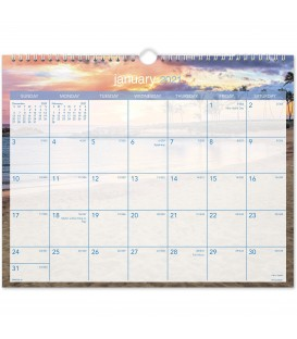 AT-A-GLANCE® 2021 TROPICAL ESCAPE MONTHLY WALL CALENDAR, 1 EACH