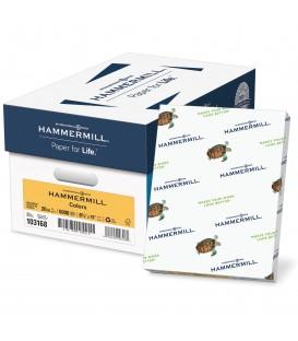 HAMMERMILL® SUPER-PREMIUM PAPER, GOLD COLOR, 5000 SHEETS/CASE